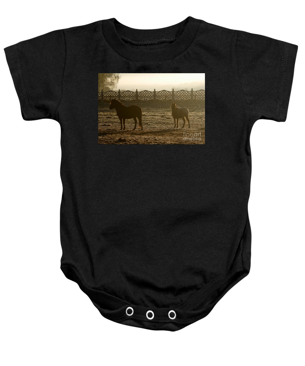 Dawn Baby Onesie featuring the photograph In The Frosty Morning by Angel Ciesniarska