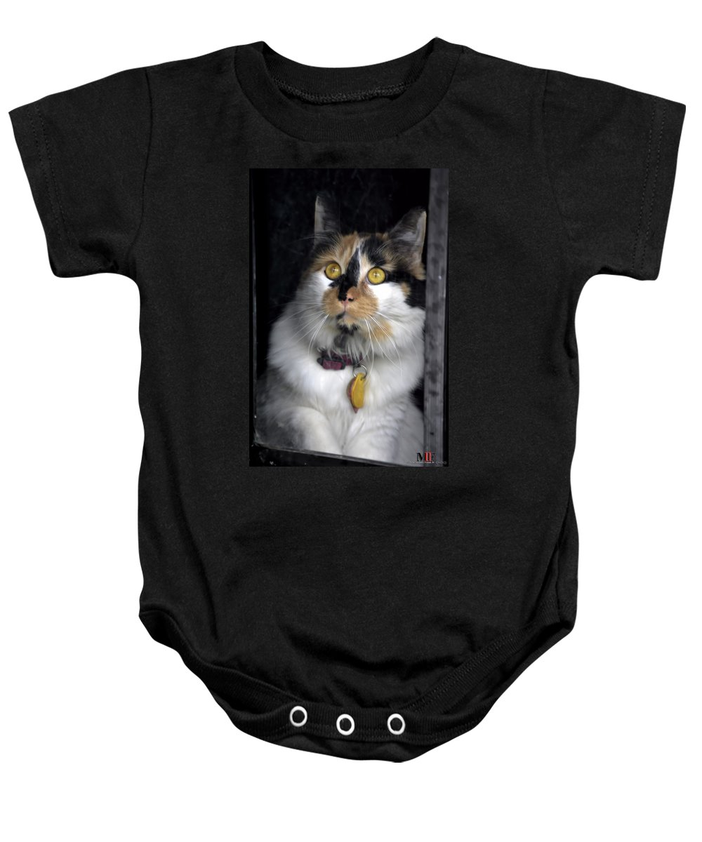 Michael Frank Jr Baby Onesie featuring the photograph Intense Cleo by Michael Frank Jr