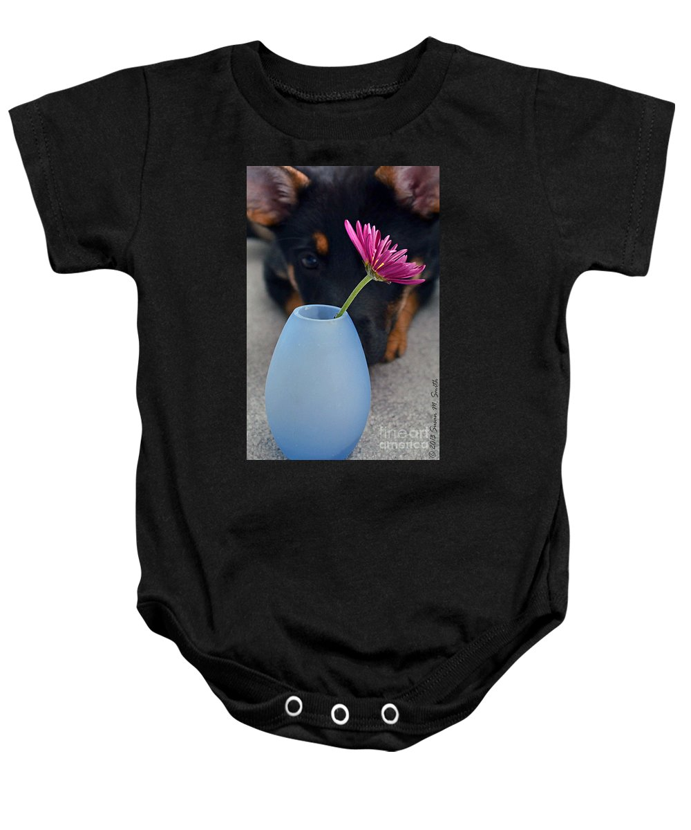 Photography Baby Onesie featuring the photograph Intent by Susan Smith