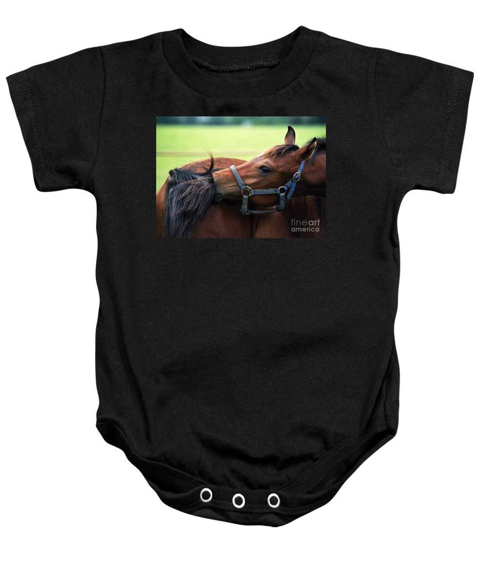 Horse Baby Onesie featuring the photograph Is It My Tail by Angel Ciesniarska