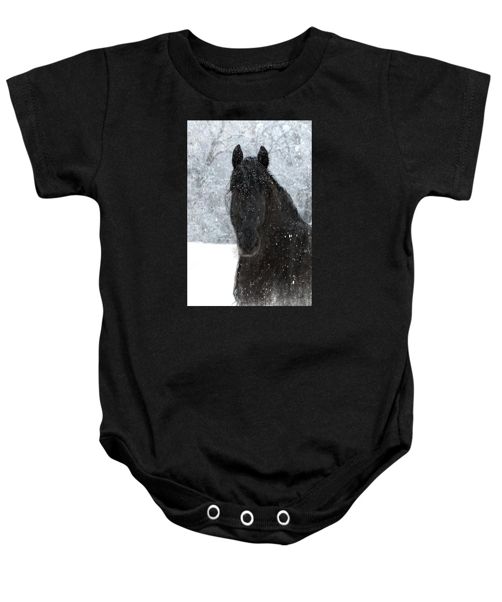 Friesian Horses Baby Onesie featuring the photograph It's Friesian out here by Fran J Scott