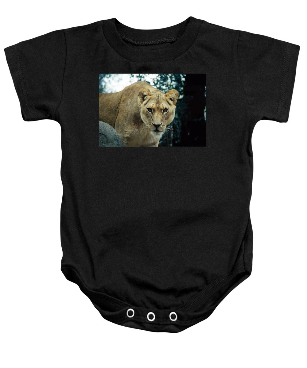 Animal Baby Onesie featuring the photograph Join Me For Lunch? by Glenn Aker