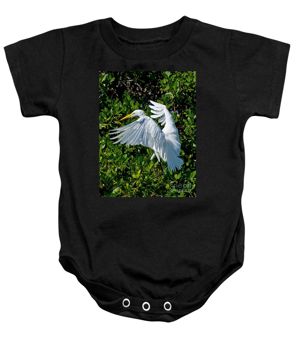 Florida Baby Onesie featuring the photograph Landing by Stephen Whalen