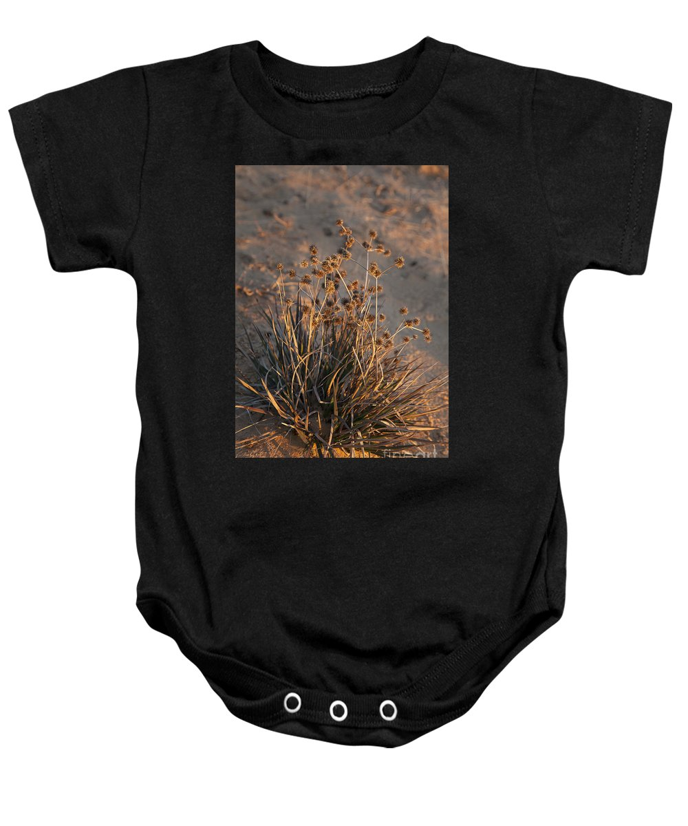 Lake Ray Roberts Baby Onesie featuring the photograph Late Day Color by Greg Kopriva