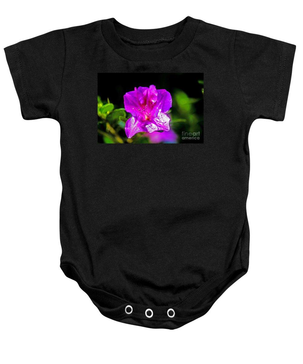 Landscape Baby Onesie featuring the photograph Lavendar Beauty by Elvis Vaughn
