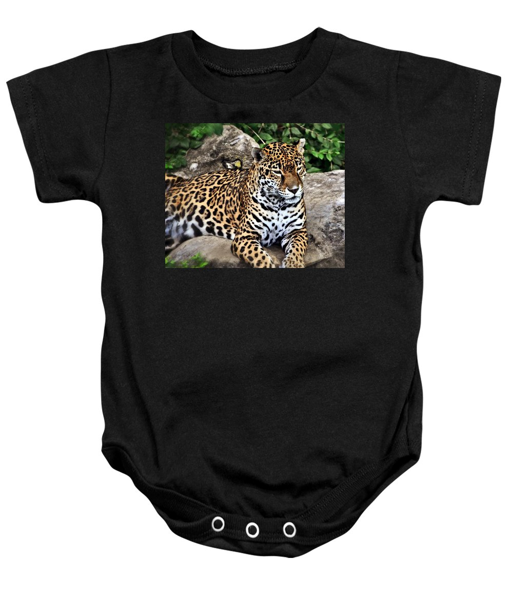 Leopard Baby Onesie featuring the photograph Leopard At Rest by Marty Koch