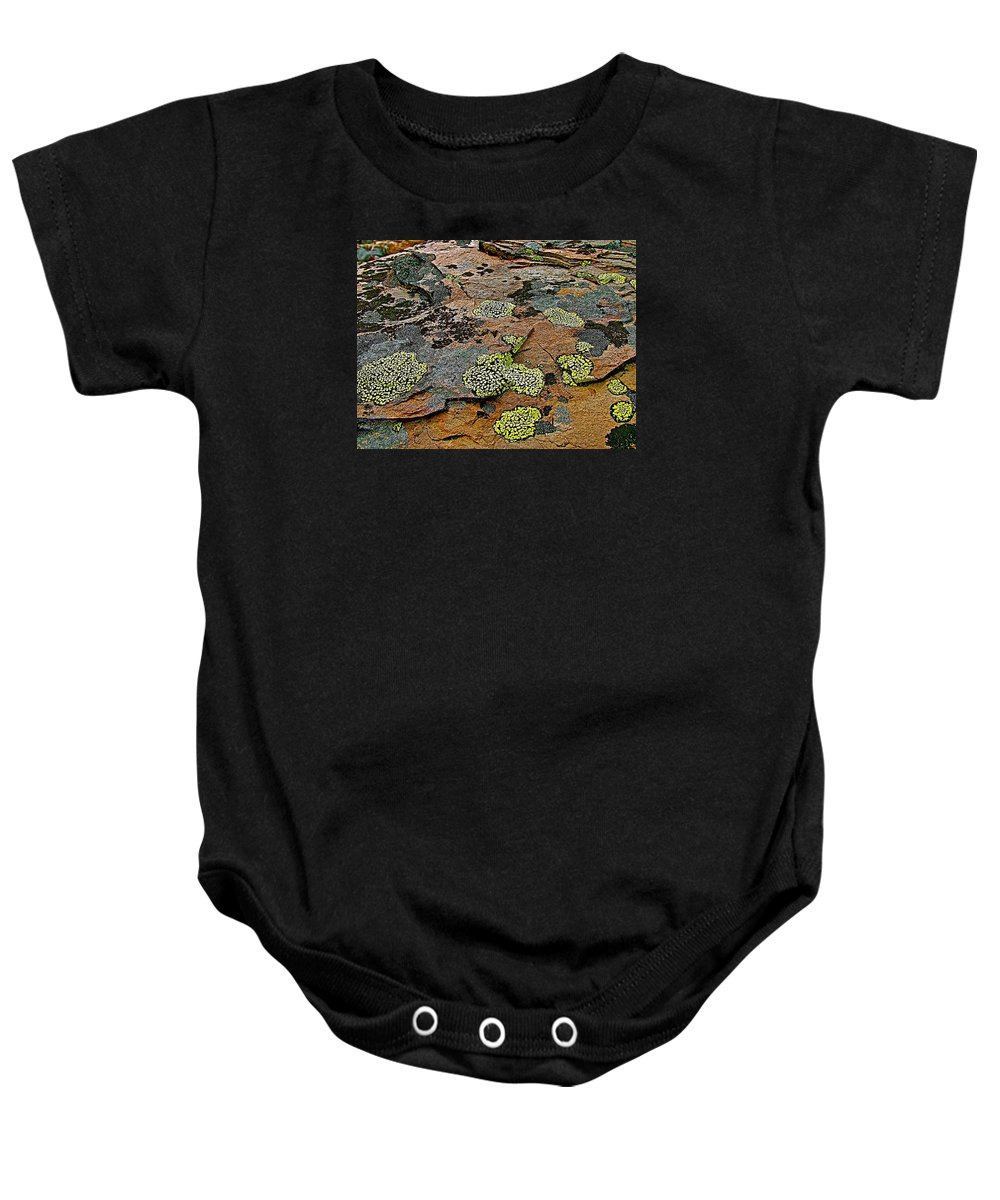 Lichens Along Plain Of Six Glaciers In Banff National Park Baby Onesie featuring the photograph Lichens Along Trail To Plain Of Six Glaciers In Banff National Park-alberta-canada by Ruth Hager