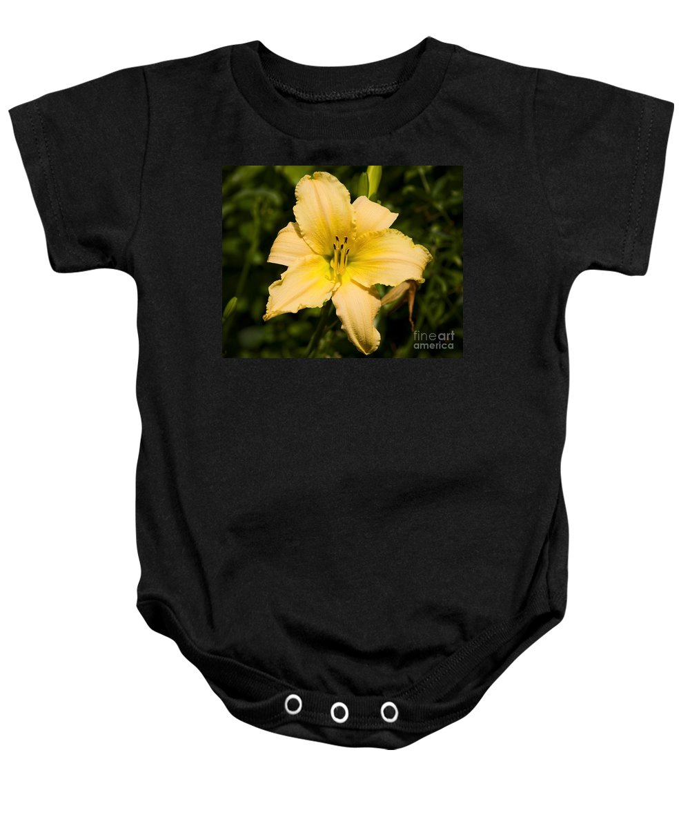 Daylily Baby Onesie featuring the photograph Lily For A Day by Joe Geraci