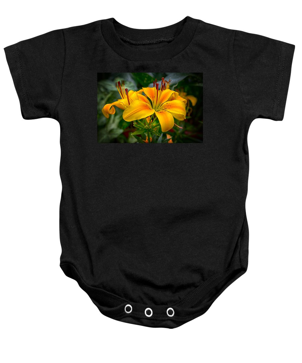 Tiger Lily Baby Onesie featuring the photograph Lily Sunshine by John Haldane
