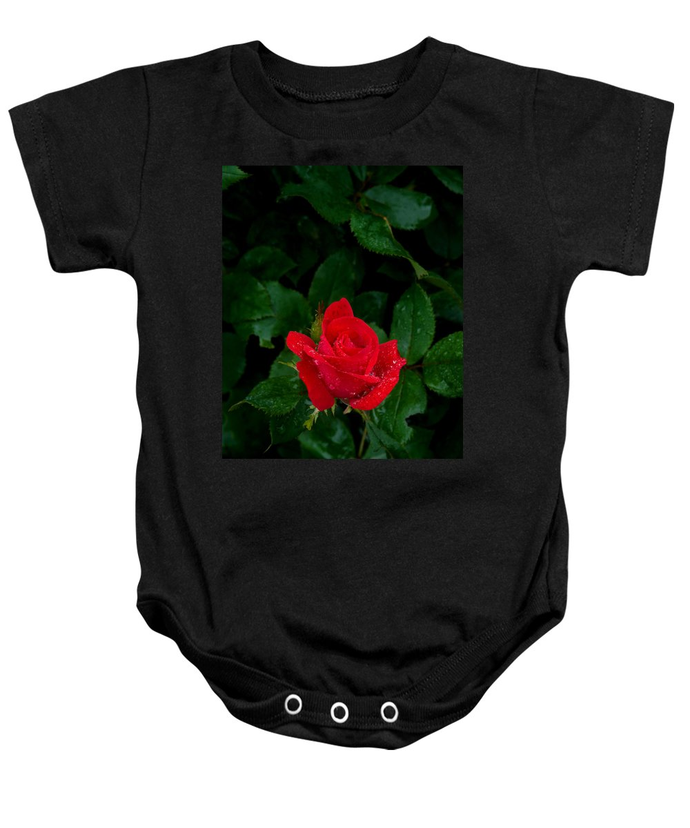 Flower Baby Onesie featuring the photograph Lonely Rose by Benjamin Reed