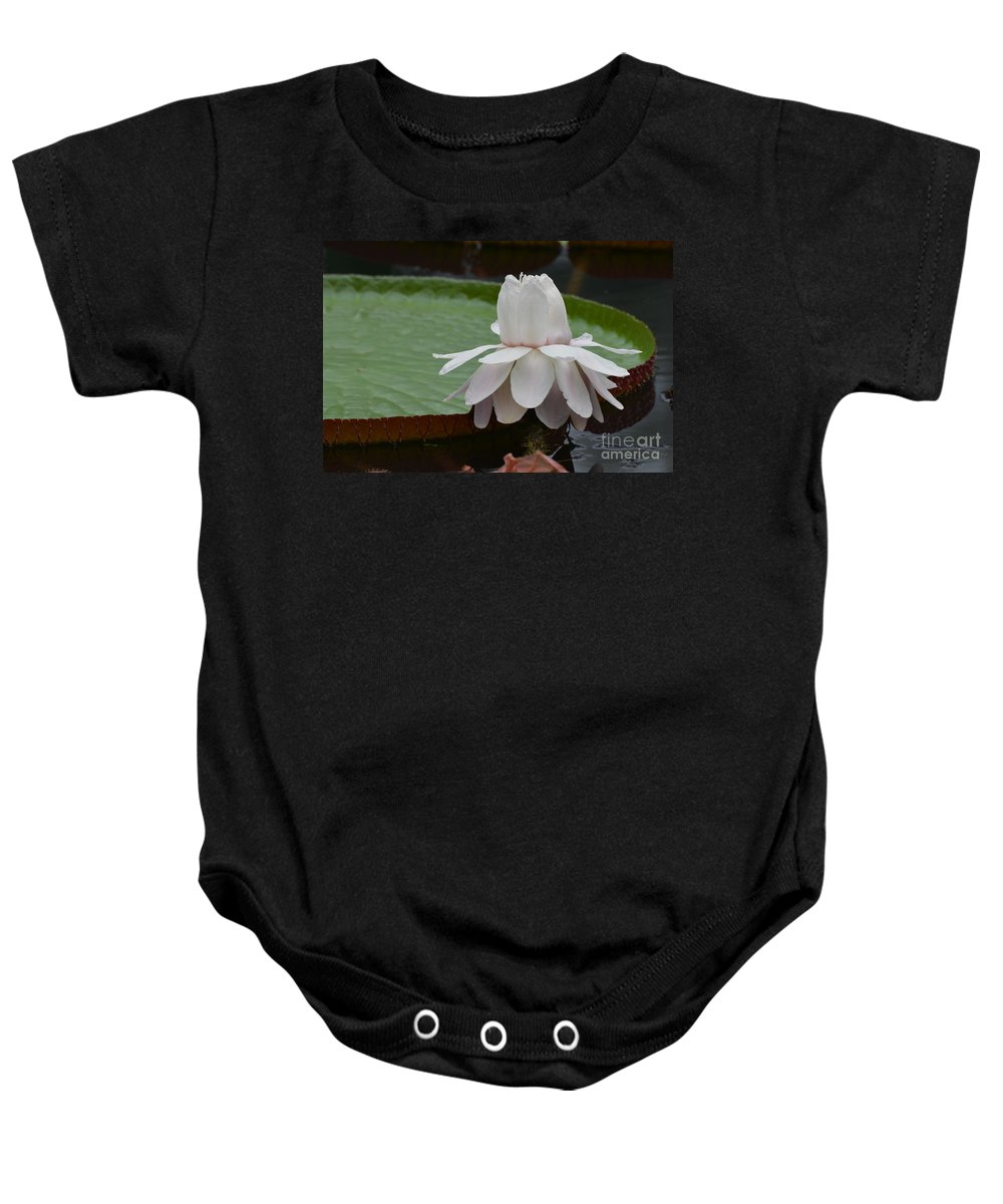Lotus Baby Onesie featuring the photograph Lotus Blossom by DejaVu Designs