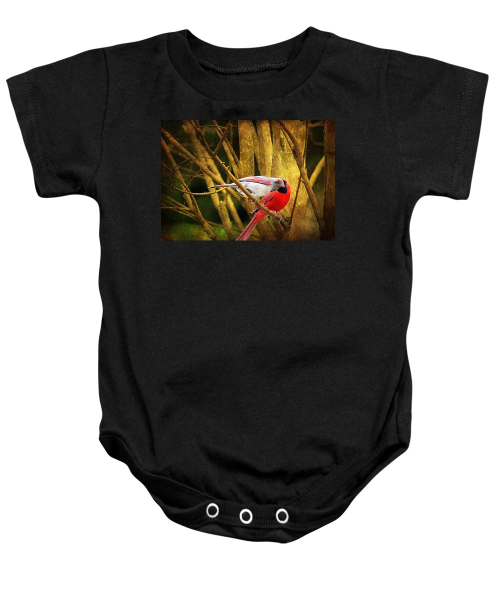 Cardinals Baby Onesie featuring the photograph Love In A Dark World by Trina Ansel