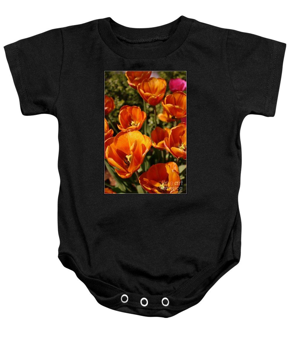Tulips Baby Onesie featuring the photograph Lovely Burnt Orange Tulips by Dora Sofia Caputo Photographic Design and Fine Art