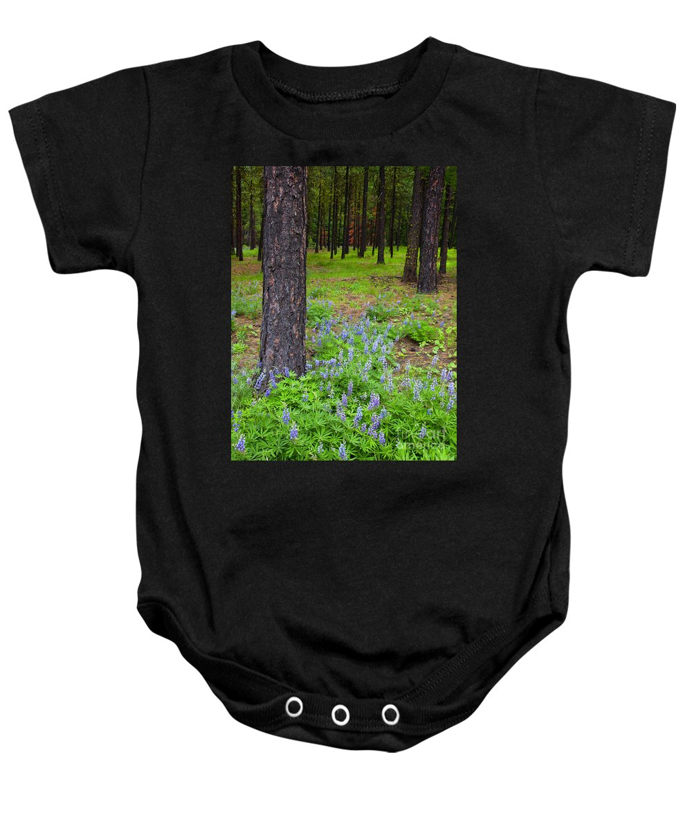 Lupine Baby Onesie featuring the photograph Lupine Forest by Mike Dawson