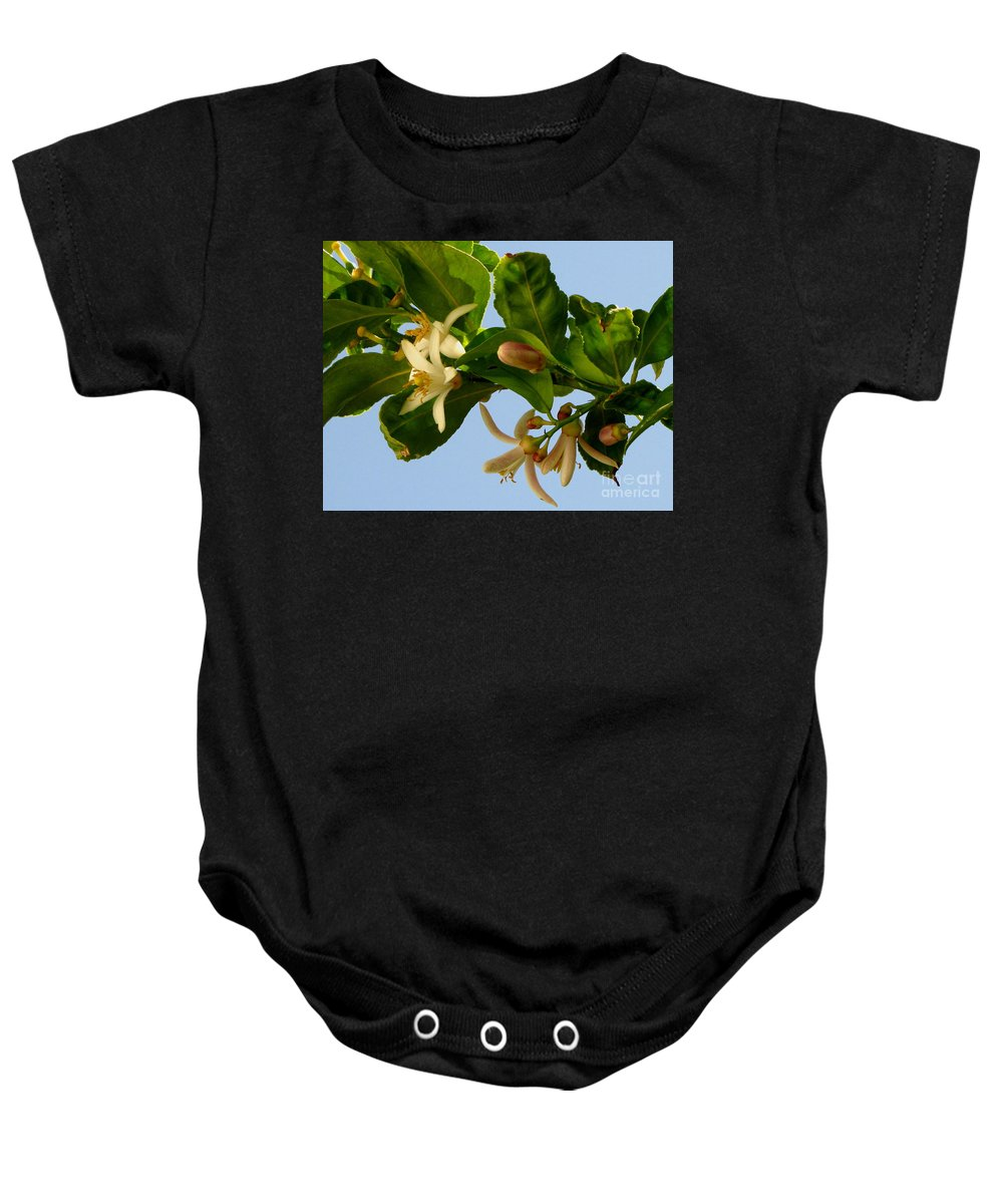Lemon Blossoms Baby Onesie featuring the photograph Luscious Lemon Promise by Marilyn Smith