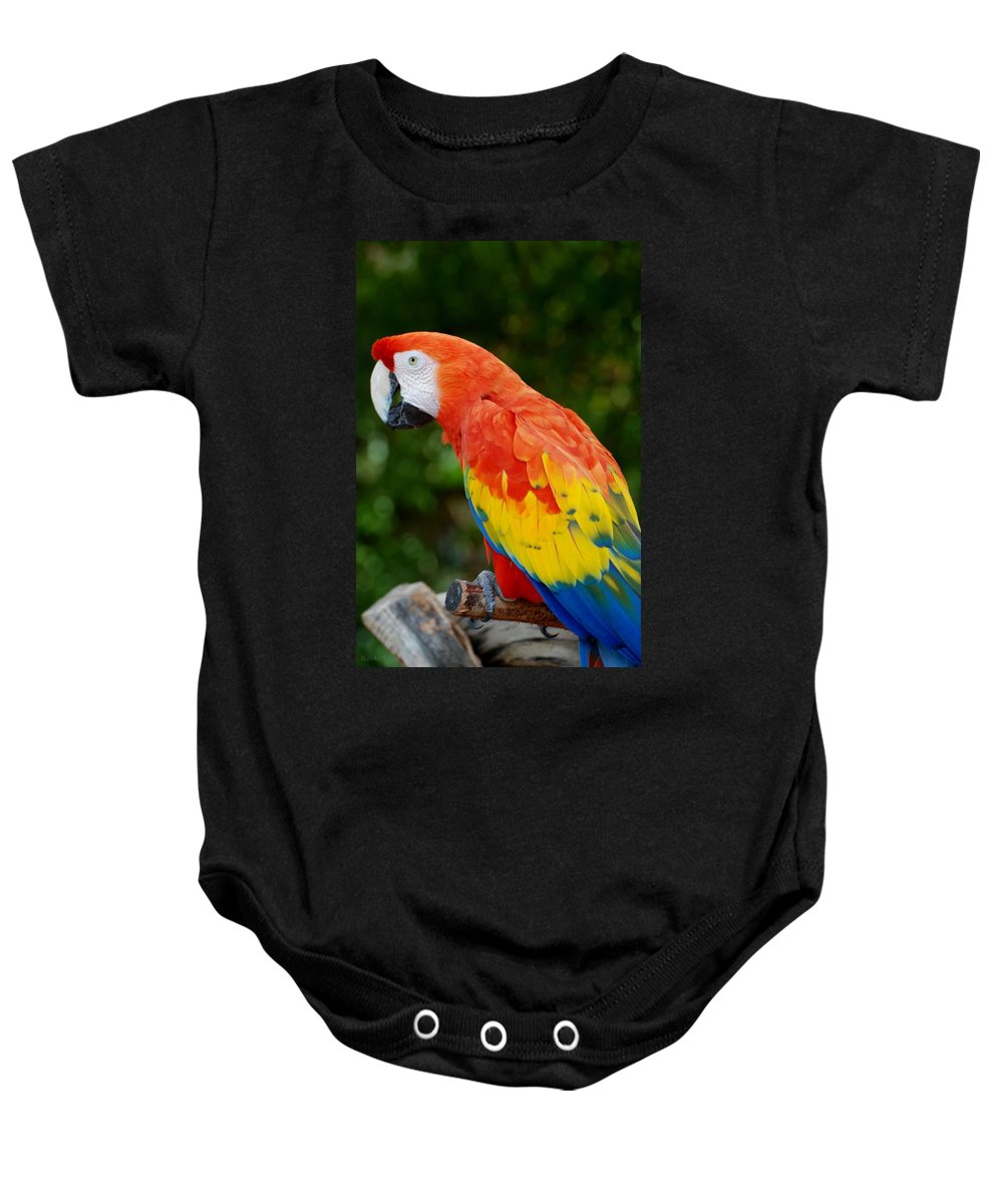 Macaws Baby Onesie featuring the photograph Macaws Of Color33 by Rob Hans