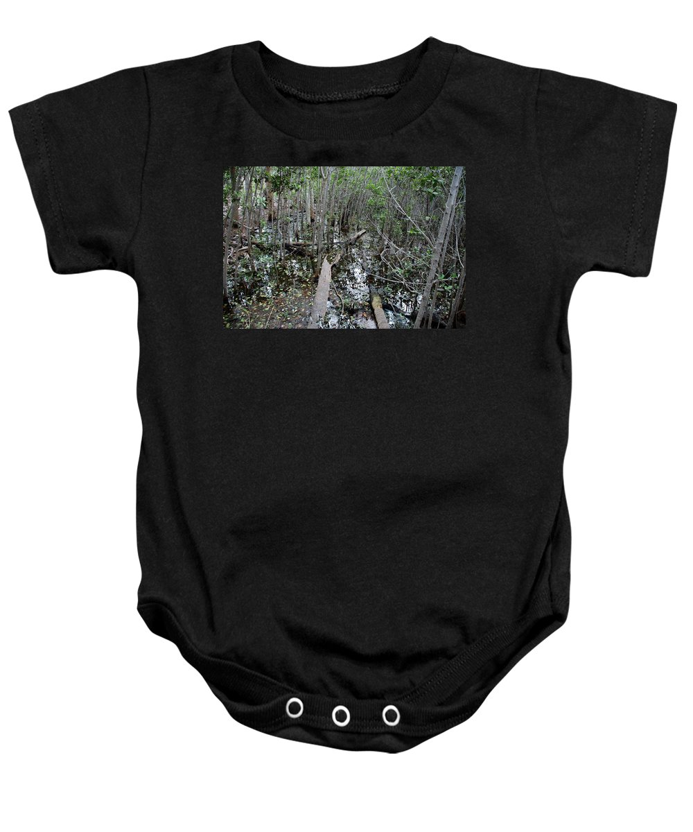 Florida Baby Onesie featuring the photograph Mangrove 001 by Larry Ward