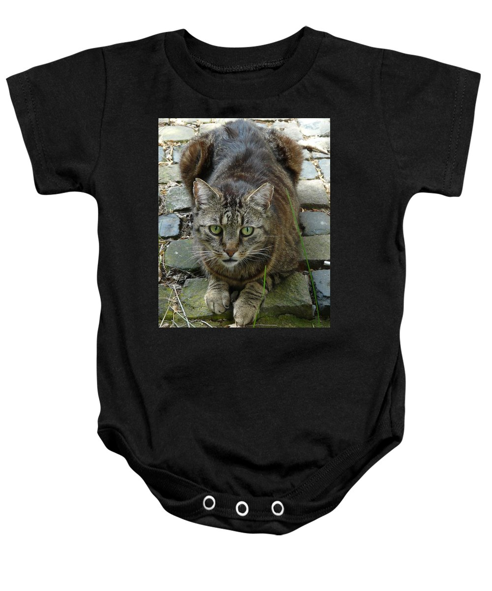 Cat Baby Onesie featuring the photograph Marco by Valerie Ornstein