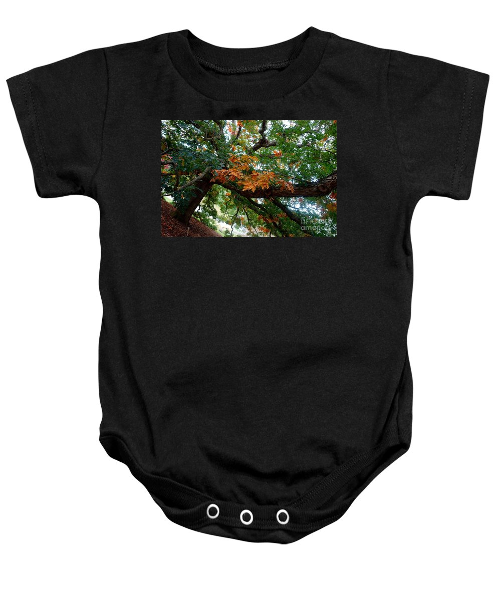 Tree Baby Onesie featuring the photograph Mighty Fall Oak #1 by Jacqueline Athmann