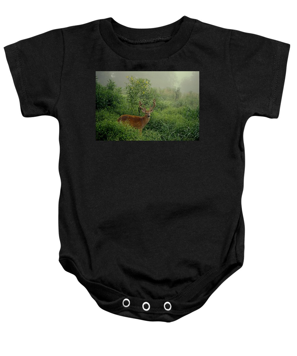 Deer Baby Onesie featuring the photograph Misty Morning Deer by Eric Albright