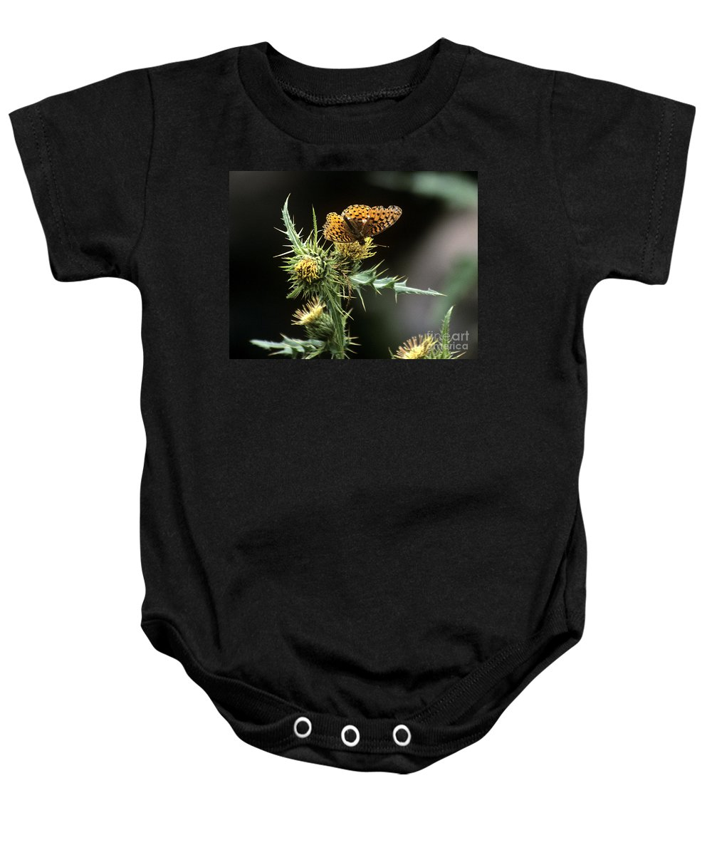Butterfly Baby Onesie featuring the photograph Monarch On Thistle by Kathy McClure