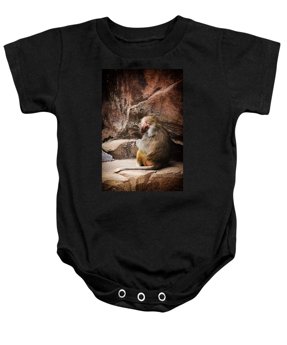 Monkey Baby Onesie featuring the photograph Monkey Business by Karol Livote