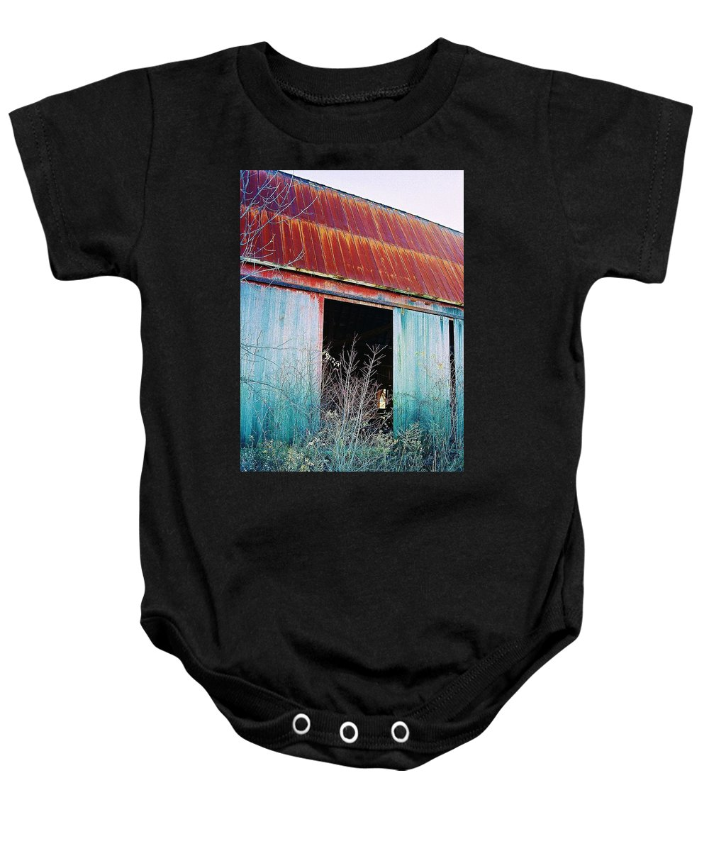 Barn Baby Onesie featuring the photograph Monroe Co. Michigan Barn by Daniel Thompson