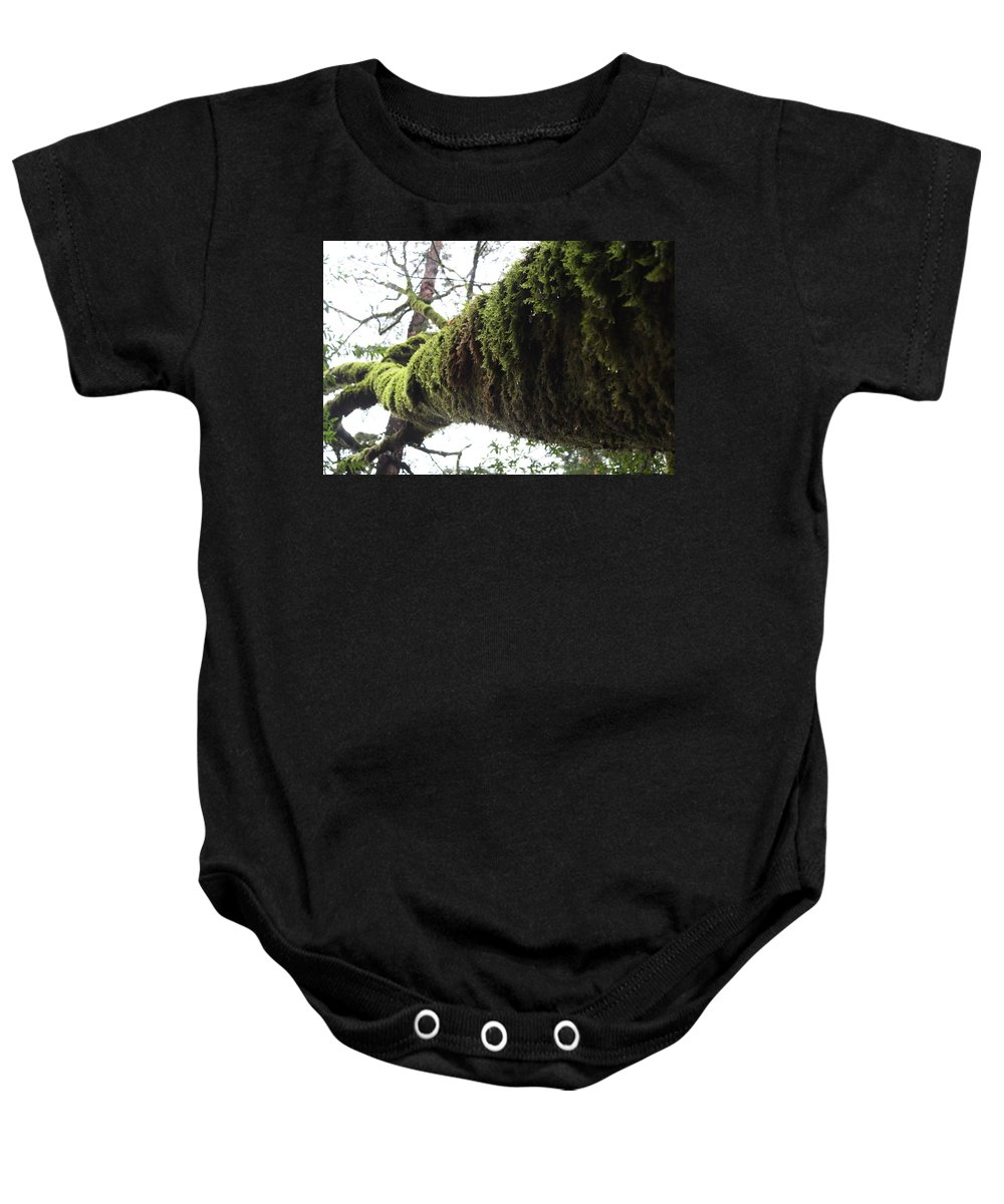 California Baby Onesie featuring the photograph Moss Covered Tree by Nicholas Miller