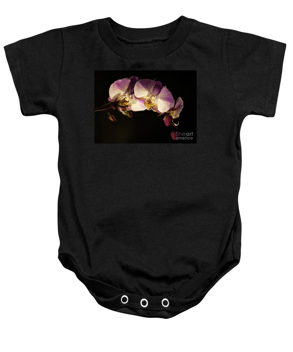 Moth Orchids Baby Onesie featuring the photograph Moth Orchids by Emma England