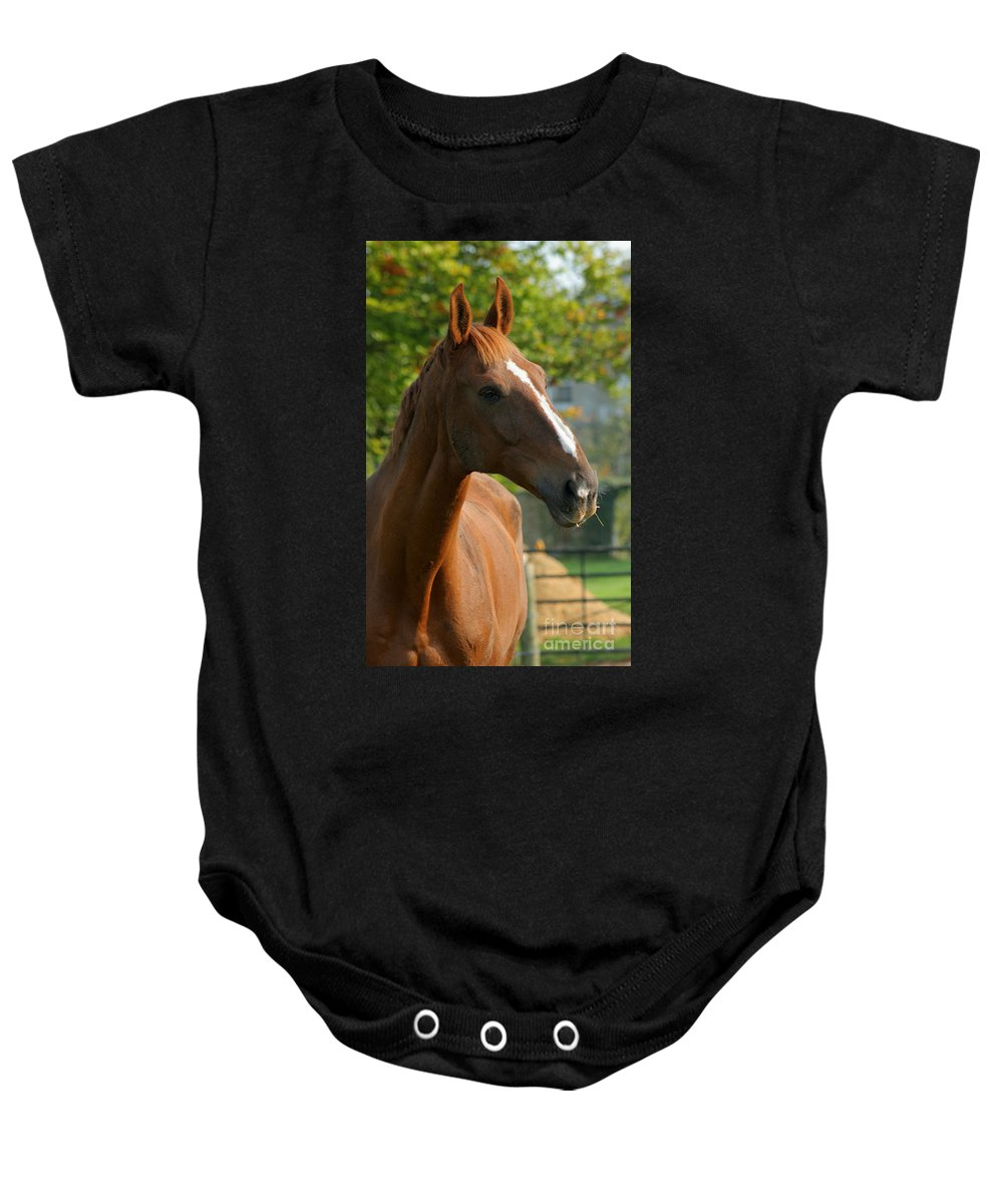 Horse Baby Onesie featuring the photograph Mr Handsome by Angel Ciesniarska