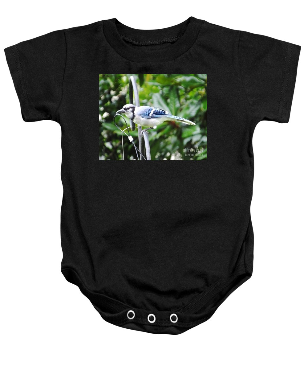 Blue Jay Baby Onesie featuring the photograph Mr Jay by Lizi Beard-Ward