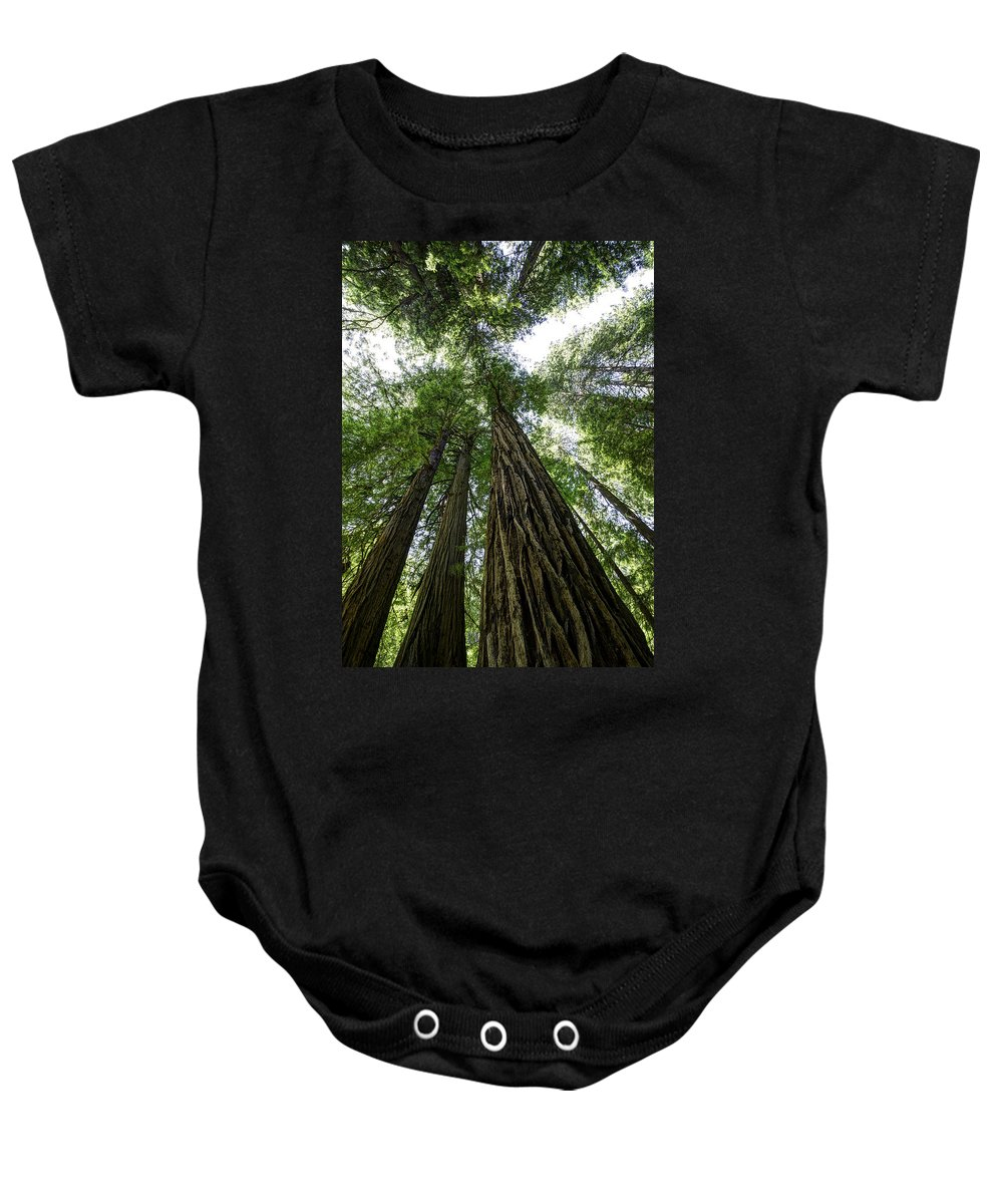 Muir Woods Baby Onesie featuring the photograph Muir Woods I by Mark Harrington