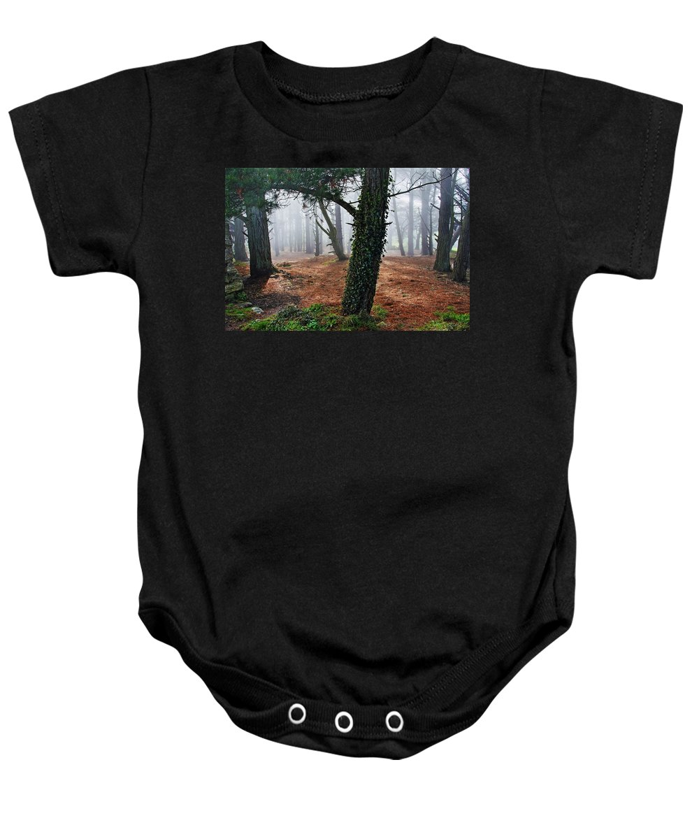 Ireland Baby Onesie featuring the photograph Mysterious Forest by Aidan Moran