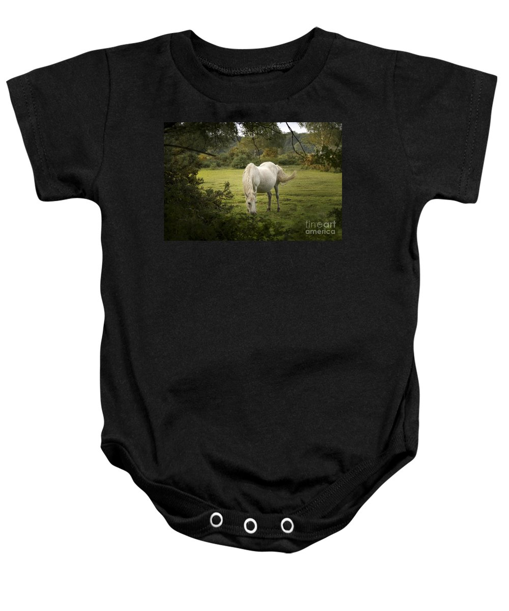New Forest Baby Onesie featuring the photograph New Forest Pony by Angel Ciesniarska