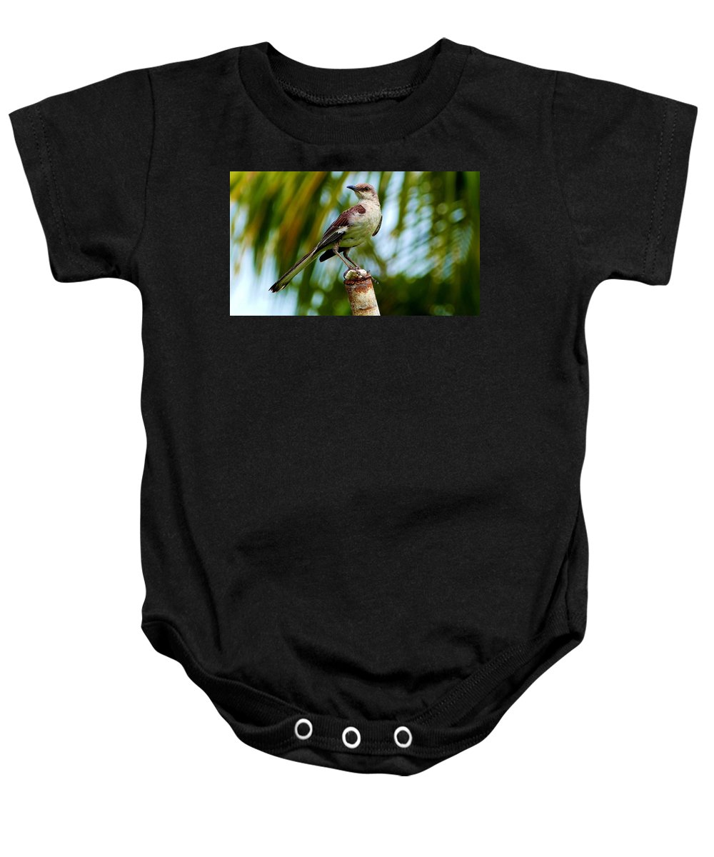 Macro Photography Baby Onesie featuring the photograph Nightingale by Amar Sheow