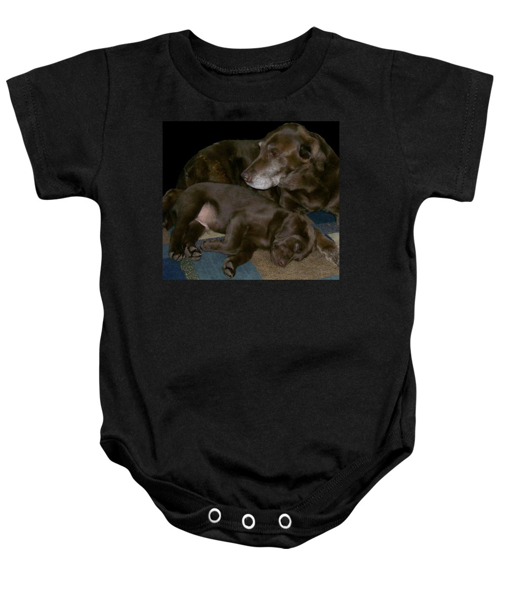 Dogs Baby Onesie featuring the photograph Old And Young by Barbara S Nickerson
