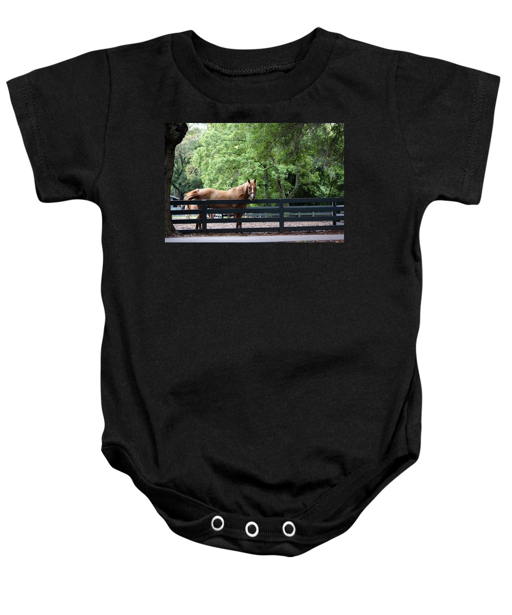 Helton Head Island Horses Baby Onesie featuring the photograph One Very Pretty Hilton Head Island Horse by Kim Pate