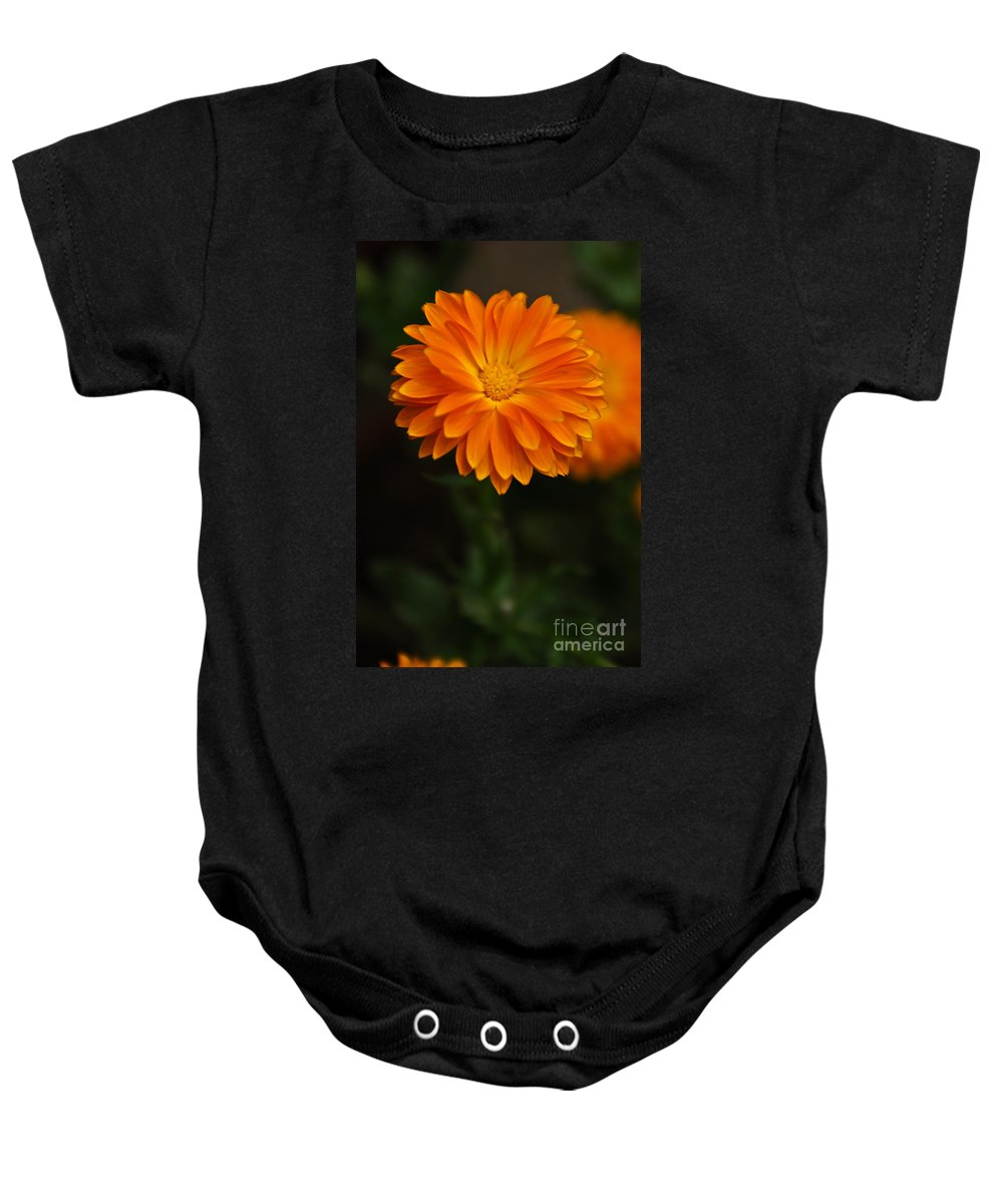Flower Baby Onesie featuring the photograph Orange Feathers by Syed Aqueel