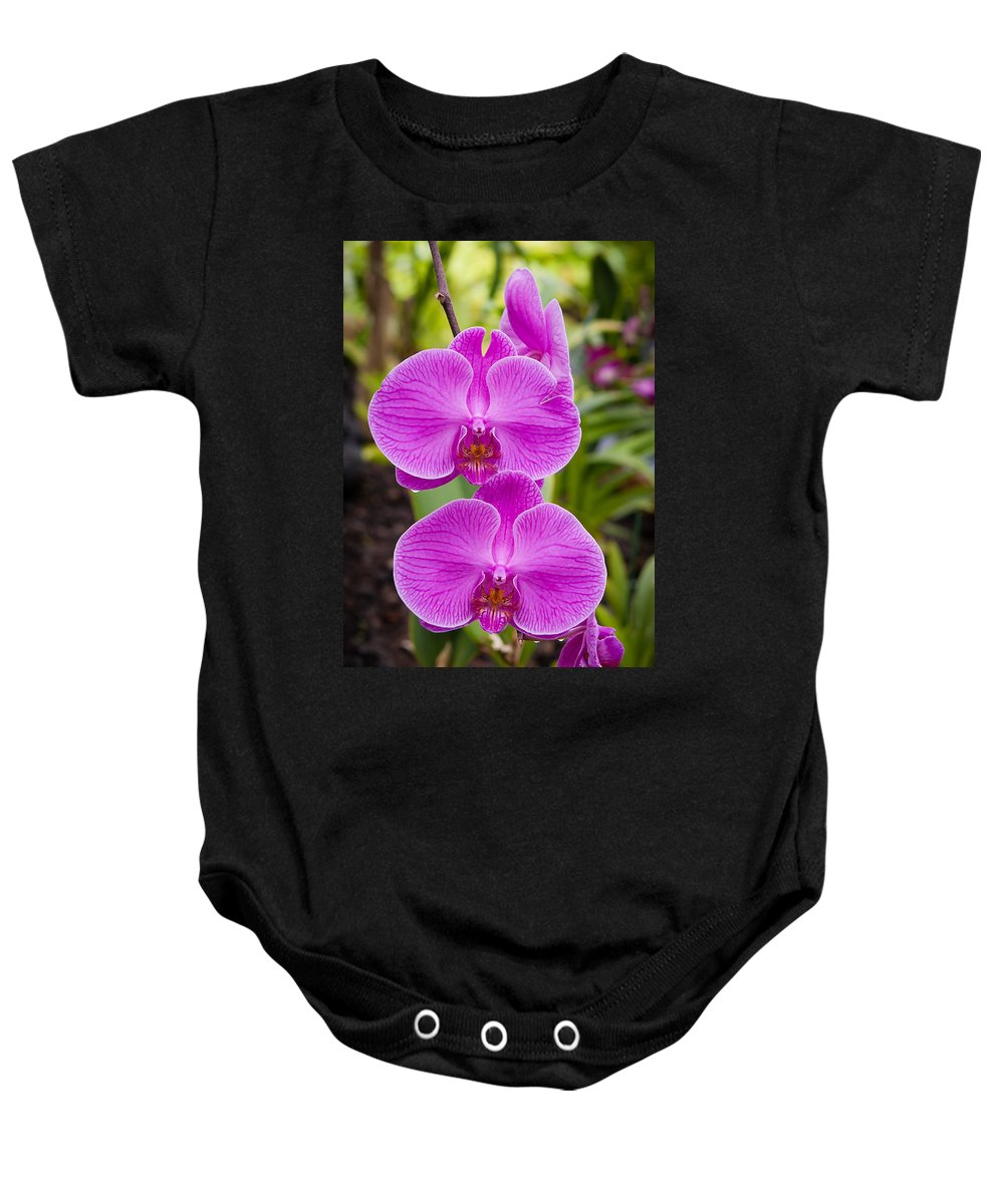 Flowers Baby Onesie featuring the photograph Orchid by Jim Thompson