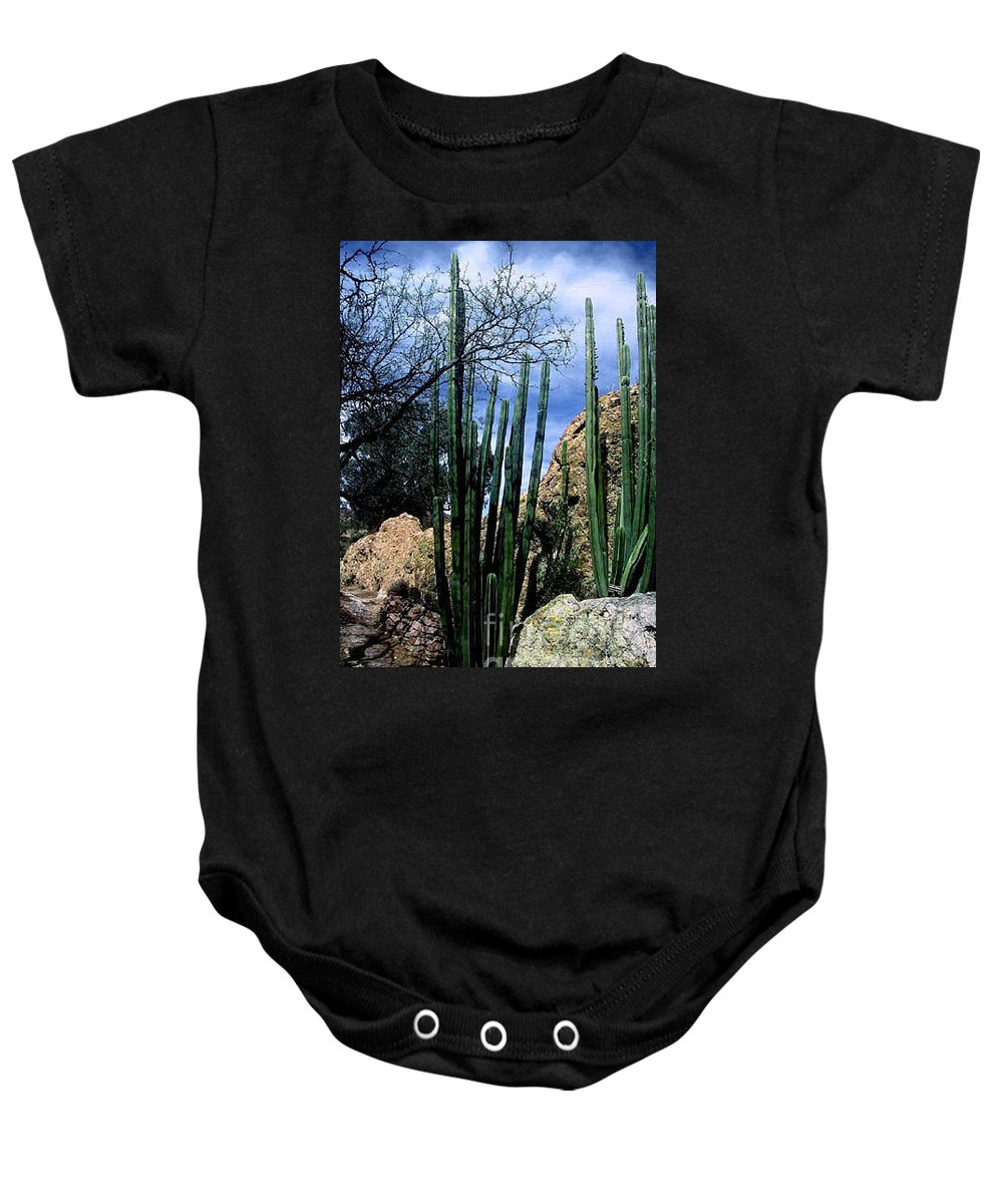 Cactus Baby Onesie featuring the photograph Organ Pipe by Kathy McClure