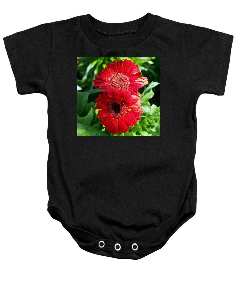 Nature Baby Onesie featuring the photograph Pair Of Red Gerber Daisy Flowers With Ladybug by Amy McDaniel