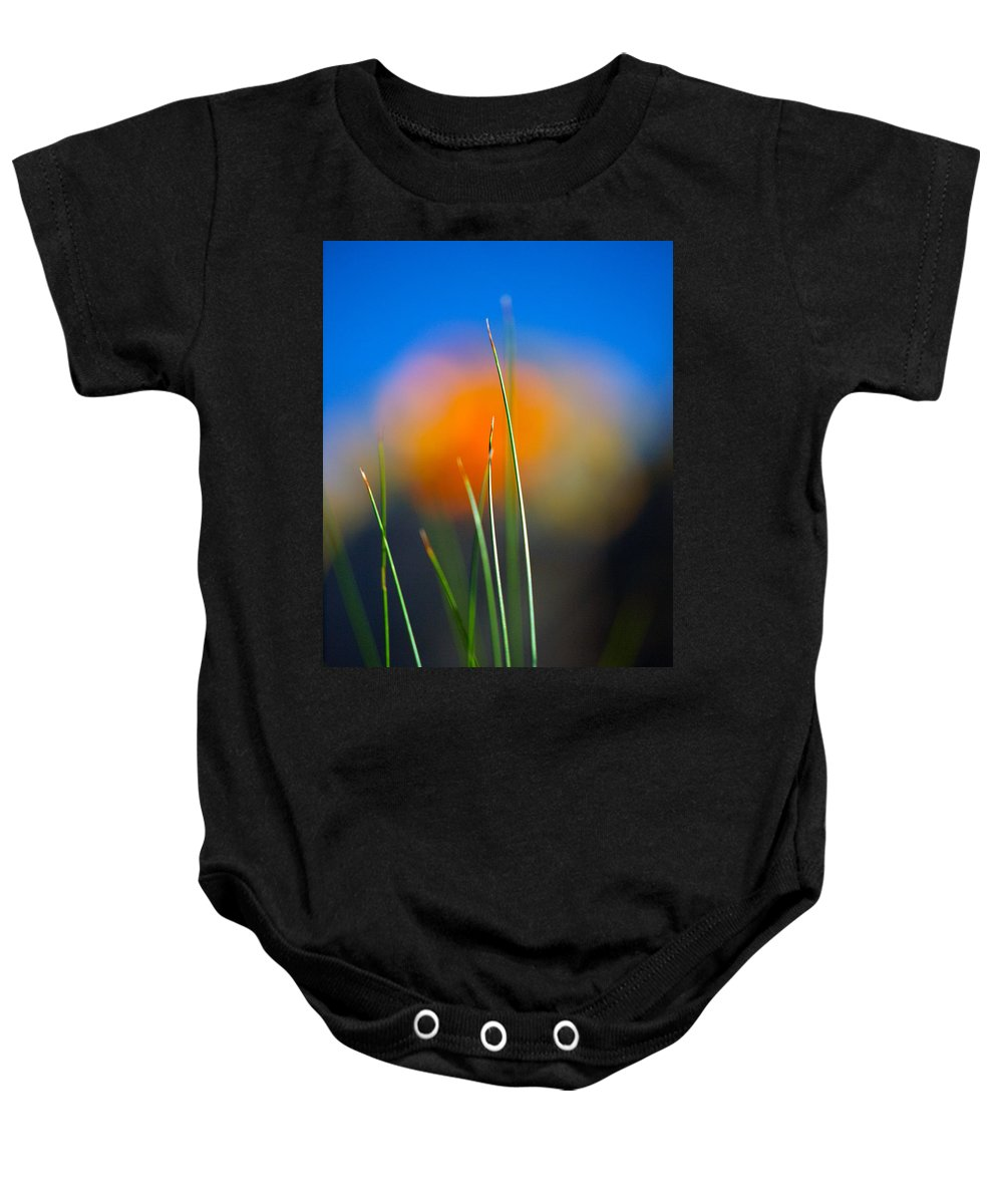 Flora Baby Onesie featuring the photograph Papyrus by Joe Schofield