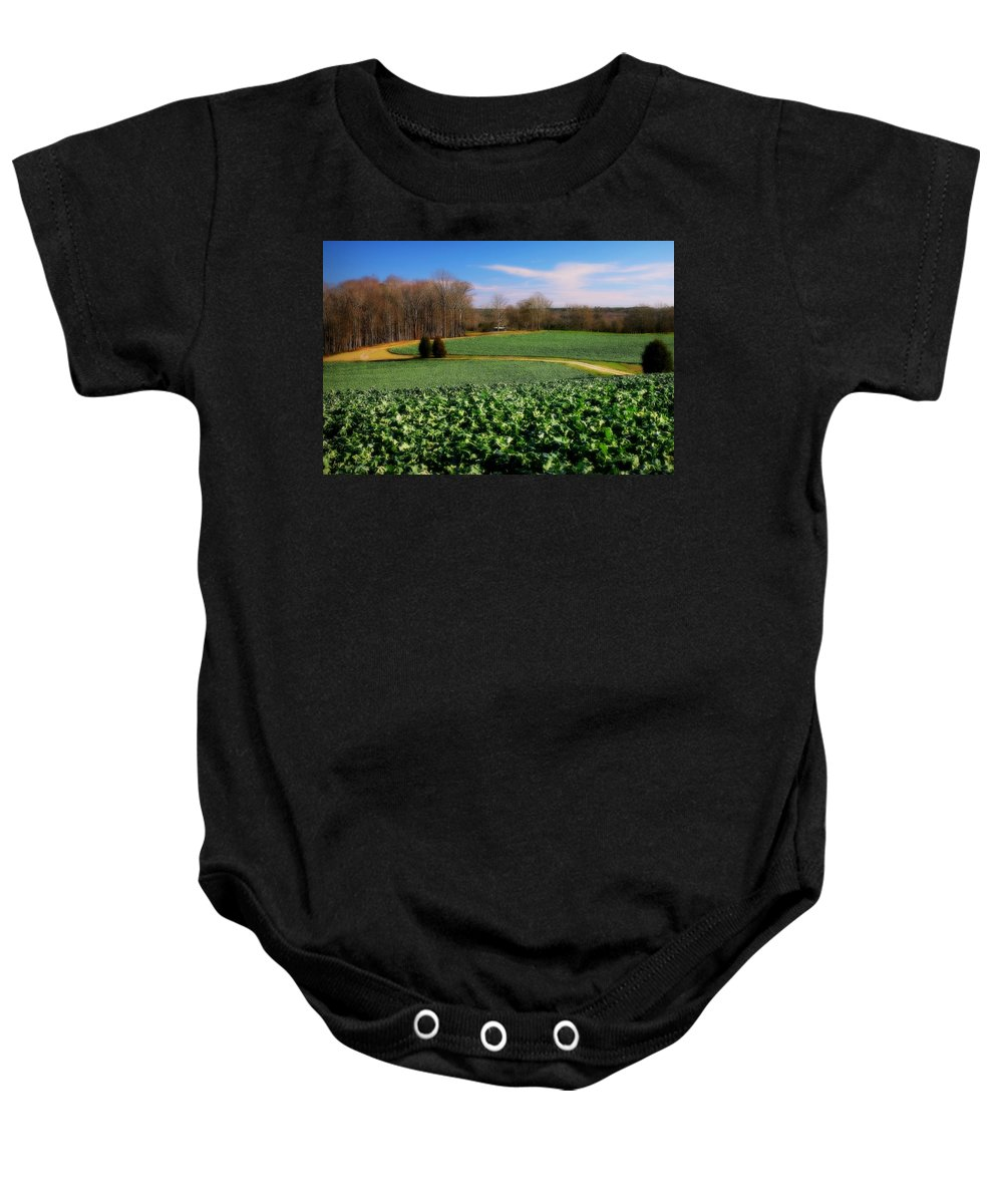 Canola Baby Onesie featuring the photograph Peaceful by Reid Callaway