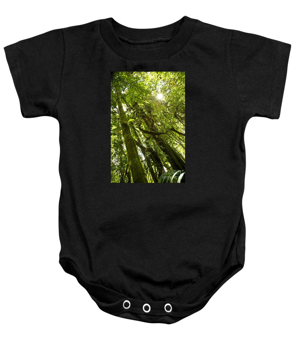 Trees Baby Onesie featuring the photograph Peeking In Costa Rica Rain Forest by Thomas Levine
