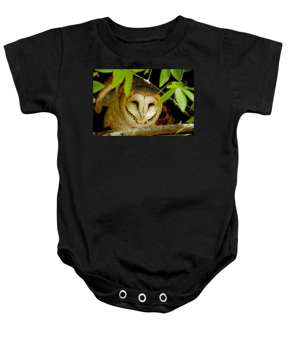 Owl Baby Onesie featuring the photograph Peering Barn Owl by Eric Albright