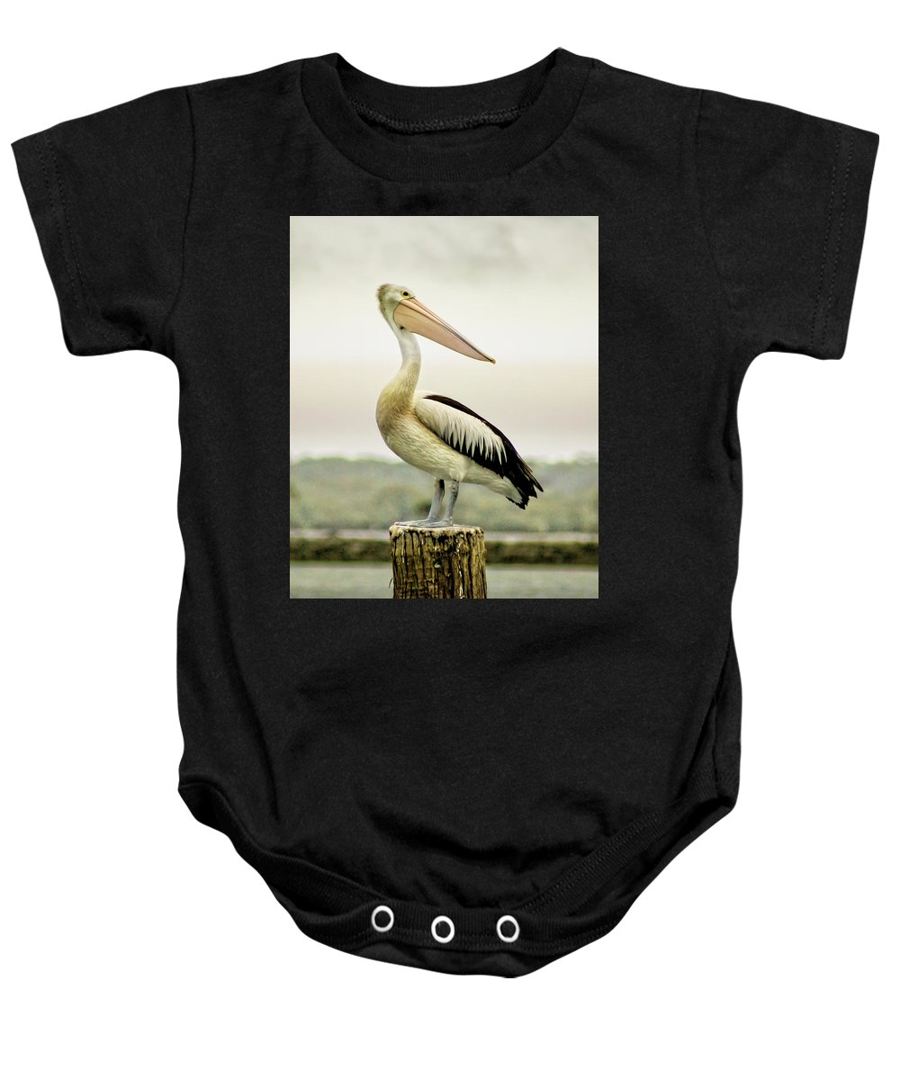 Animlas Baby Onesie featuring the photograph Pelican Poise by Holly Kempe
