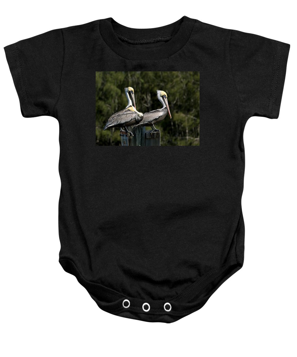 Birds Baby Onesie featuring the photograph Pelican Threesome by John M Bailey