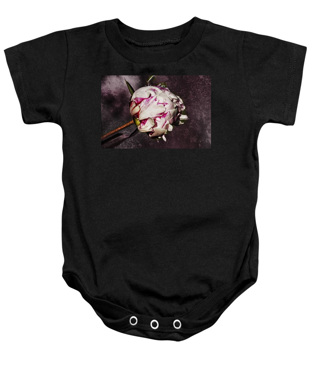 Peony Baby Onesie featuring the photograph Peony 1 by Belinda Greb