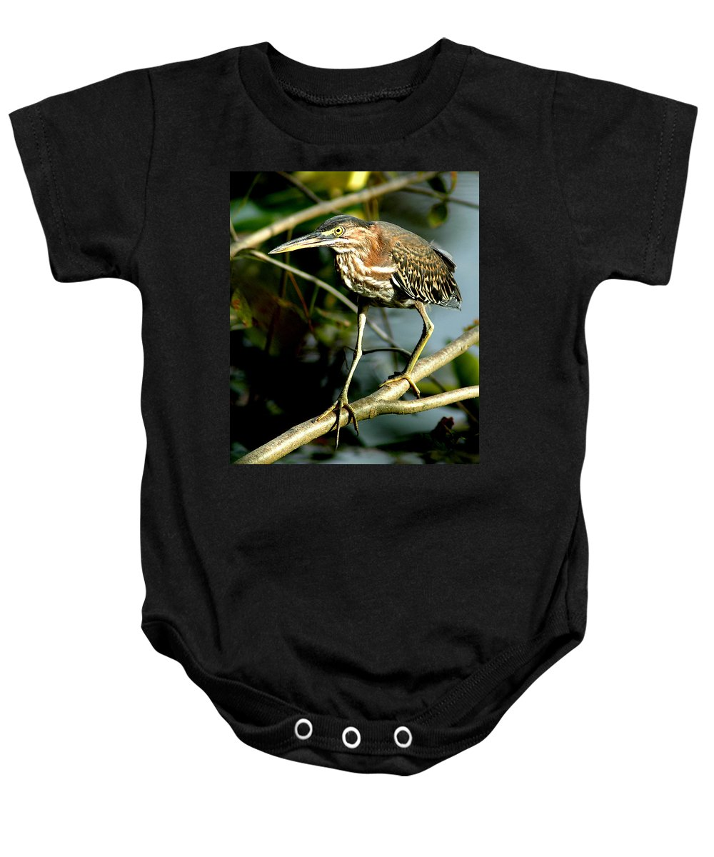 Green Heron Baby Onesie featuring the photograph Pigeon Toed Heron by Norman Johnson