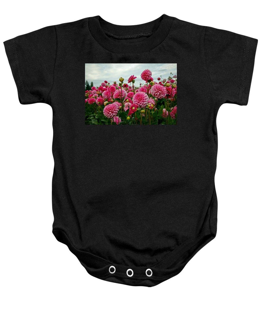 Dahlia Baby Onesie featuring the photograph Pink Dahlia Field by Athena Mckinzie